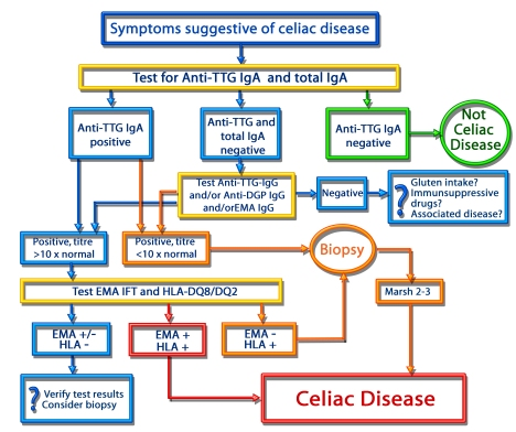 Diagnostic scheme for patients presenting with symptoms suggestive for celiac disease